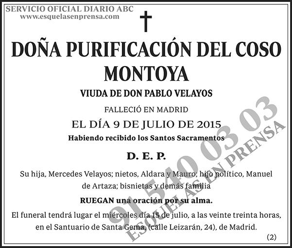 Purificación del Coso Montoya